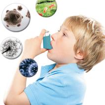 Asma  e Alergias