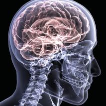 Esclerose Lateral Amiotrófica – ELA