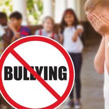 Bullying 2014