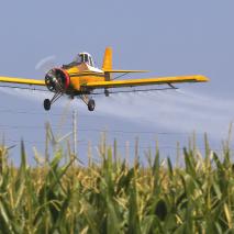 Agrotóxicos: Químicos do Mal?