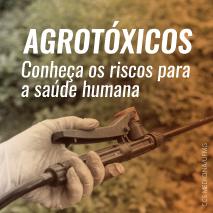 Agrotóxicos – conheça os riscos para a saúde humana