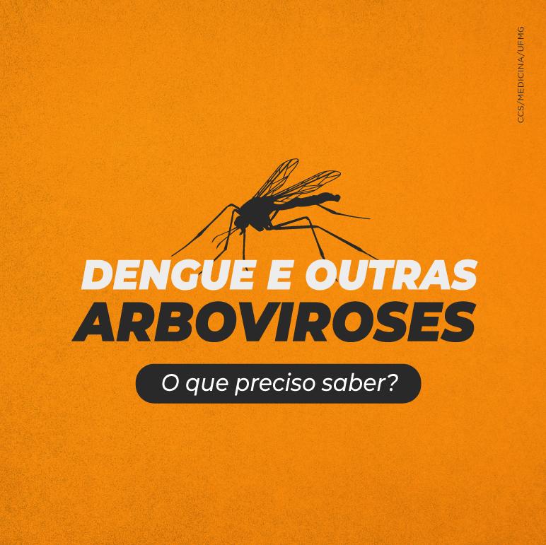 Dengue e outras arboviroses – reapresentação